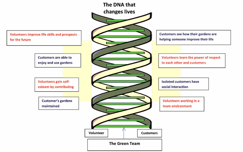 A picture of a DNA helix showing how The Green Team integrates its services