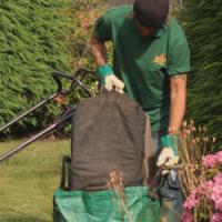 gardening1-1080x300