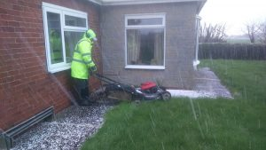 gardening in the hail